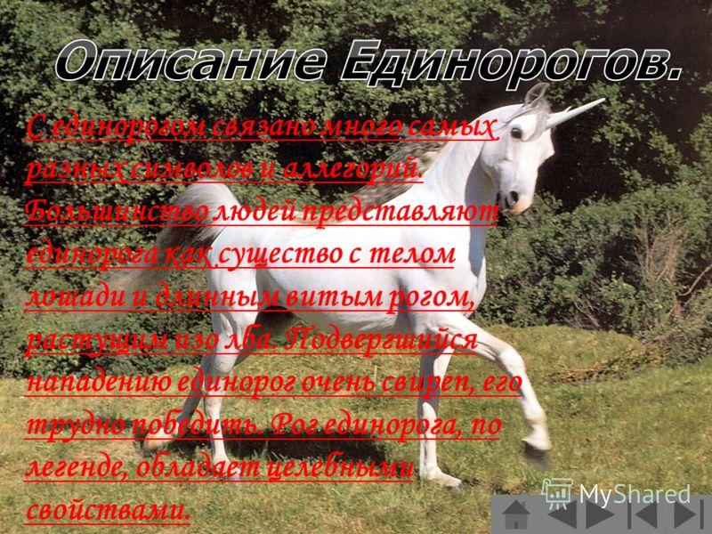 С единорогом связано много самых разных символов и аллегорий. Большинство людей представляют единорога как существо с телом лошади и длинным витым рогом, растущим изо лба. Подвергшийся нападению единорог очень свиреп, его трудно победить. Рог единоро