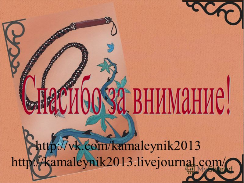 http://vk.com/kamaleynik2013 http://kamaleynik2013.livejournal.com/