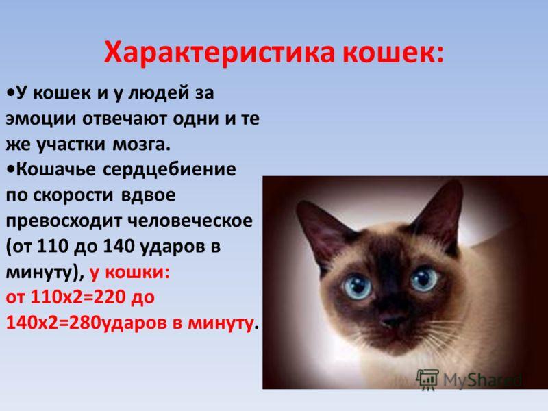 Характеристика кошек: У кошек и у людей за эмоции отвечают одни и те же участки мозга. Кошачье сердцебиение по скорости вдвое превосходит человеческое (от 110 до 140 ударов в минуту), у кошки: от 110х2=220 до 140х2=280ударов в минуту.
