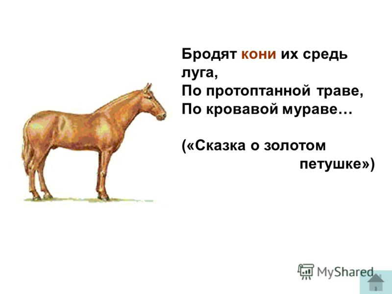 Бродят кони их средь луга, По протоптанной траве, По кровавой мураве… («Сказка о золотом петушке»)