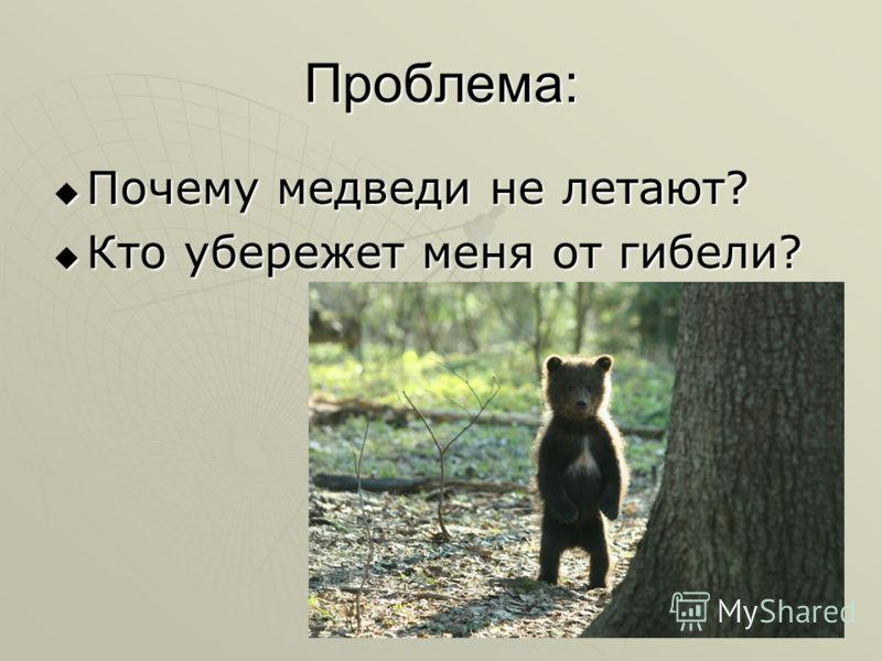Проблема: Почему медведи не летают? Почему медведи не летают? Кто убережет меня от гибели? Кто убережет меня от гибели?