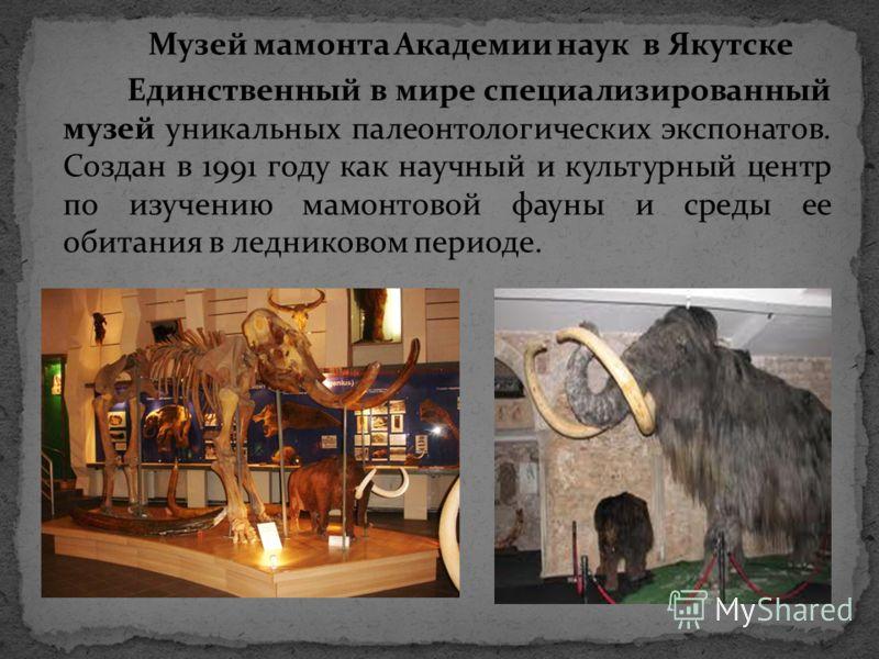 Музей мамонта Академии наук в Якутске Единственный в мире специализированный музей уникальных палеонтологических экспонатов. Создан в 1991 году как научный и культурный центр по изучению мамонтовой фауны и среды ее обитания в ледниковом периоде.