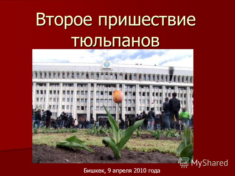 Второе пришествие тюльпанов Бишкек, 9 апреля 2010 года
