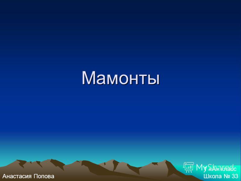 Мамонты Анастасия Попова 1 «А» класс Школа 33
