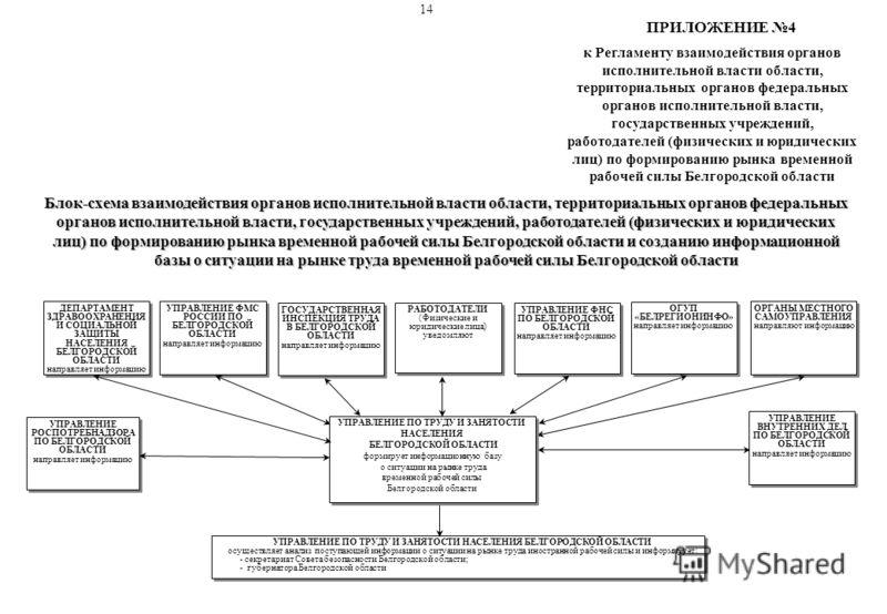Блок-схема взаимодействия органов исполнительной власти области, территориальных органов федеральных органов исполнительной власти, государственных учреждений, работодателей (физических и юридических лиц) по формированию рынка временной рабочей силы