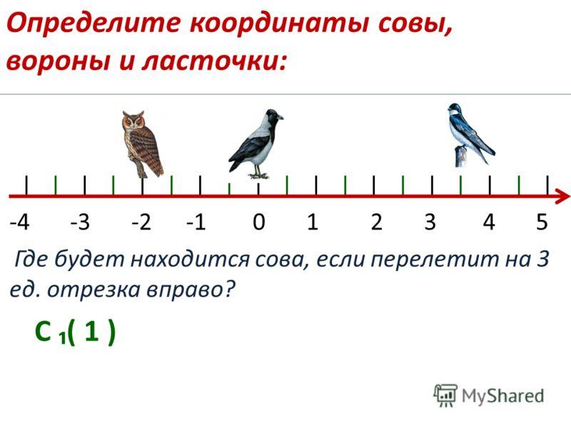 Определите координаты совы, вороны и ласточки: | | | | | | | | | | | | | | | | | | | -4 -3 -2 -1 0 1 2 3 4 5 Где будет находится сова, если перелетит на 3 ед. отрезка вправо? С ( 1 )