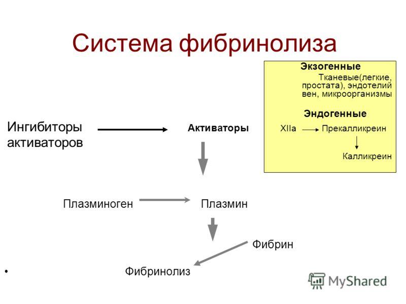 Факторы, обеспечивающие жидкое состояние крови в сосудах - Идеальная гладкость сосудистой стенки - Сосудистая стенка вырабатывает ингибиторы свертывания - Микроскопический слой фибрина - Отрицательный заряд сосудистой стенки - Температура крови - Дви