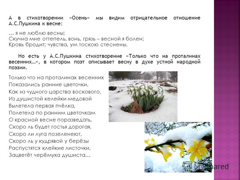 А в стихотворении «Осень» мы видим отрицательное отношение А.С.Пушкина к весне: … я не люблю весны; Скучна мне оттепель, вонь, грязь – весной я болен; Кровь бродит; чувства, ум тоскою стеснены. Но есть у А.С.Пушкина стихотворение «Только что на прота