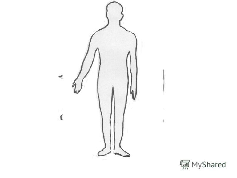 Схема Тела фото