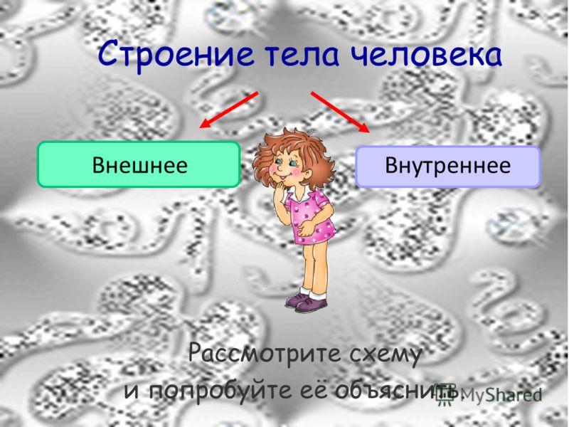 Строение тела человека Рассмотрите схему и попробуйте её объяснить. ВнешнееВнутреннее