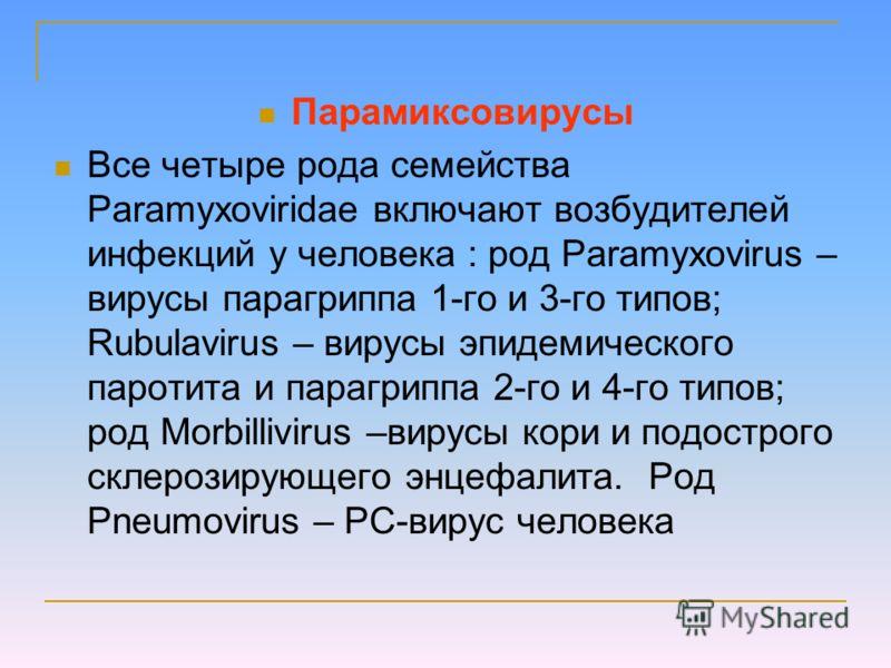 Парамиксовирусы Все четыре рода семейства Paramyxoviridae включают возбудителей инфекций у человека : род Paramyxovirus – вирусы парагриппа 1-го и 3-го типов; Rubulavirus – вирусы эпидемического паротита и парагриппа 2-го и 4-го типов; род Morbillivi