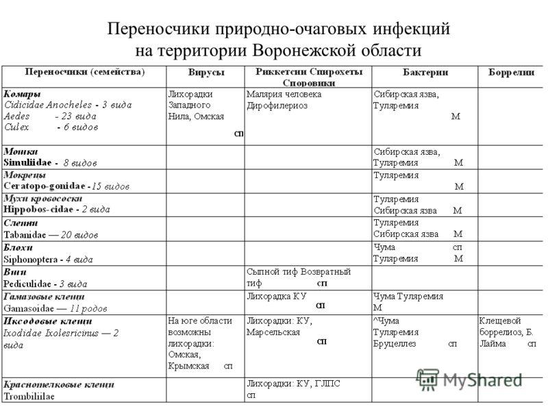 Переносчики природно-очаговых инфекций на территории Воронежской области