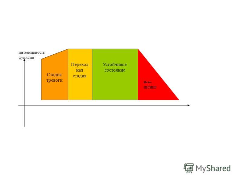 Стадия тревоги Переход ная стадия Устойчивое состояние Исто- щение интенсивность функции