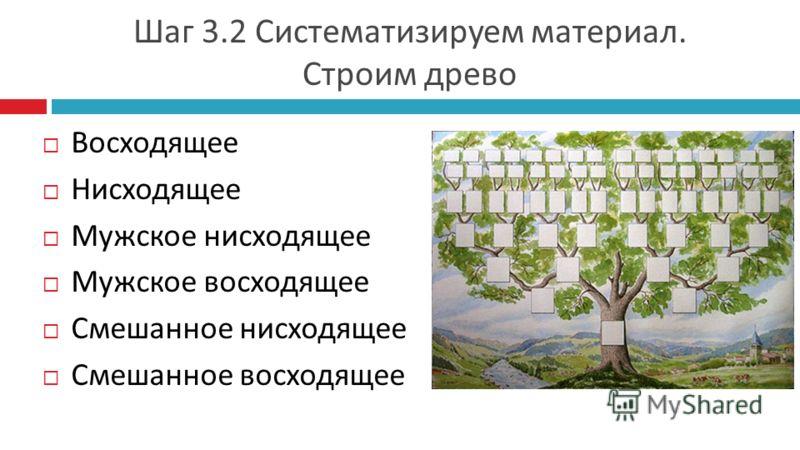 Шаг 3.2 Систематизируем материал. Строим древо Восходящее Нисходящее Мужское нисходящее Мужское восходящее Смешанное нисходящее Смешанное восходящее