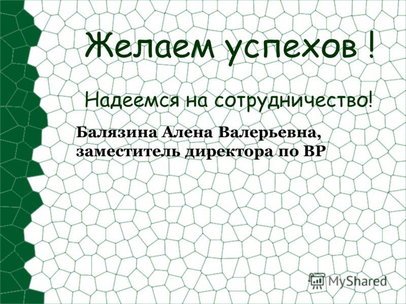Желаем успехов ! Надеемся на сотрудничество! Балязина Алена Валерьевна, заместитель директора по ВР