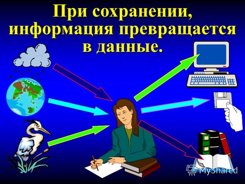Информация и человек. Человек находится внутри окружающей его среды. Между человеком и окружающей средой существует информационная связь.