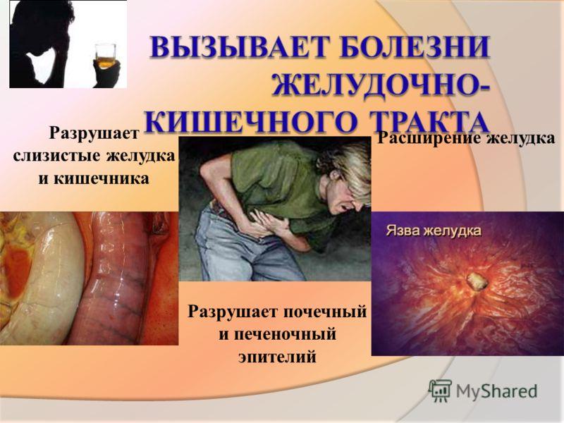 Расширение желудка Разрушает слизистые желудка и кишечника Разрушает почечный и печеночный эпителий