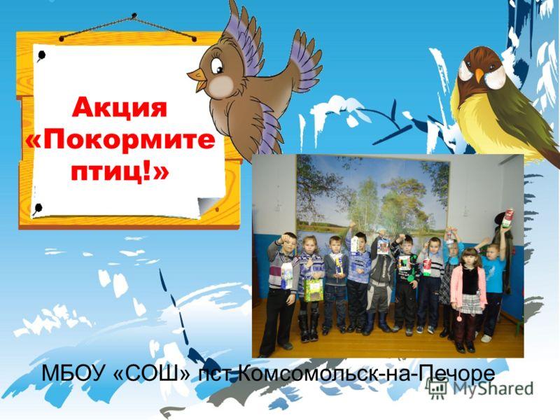Акция «Покормите птиц!» МБОУ «СОШ» пст Комсомольск-на-Печоре