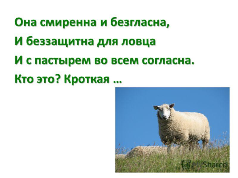Она смиренна и безгласна, И беззащитна для ловца И с пастырем во всем согласна. Кто это? Кроткая …