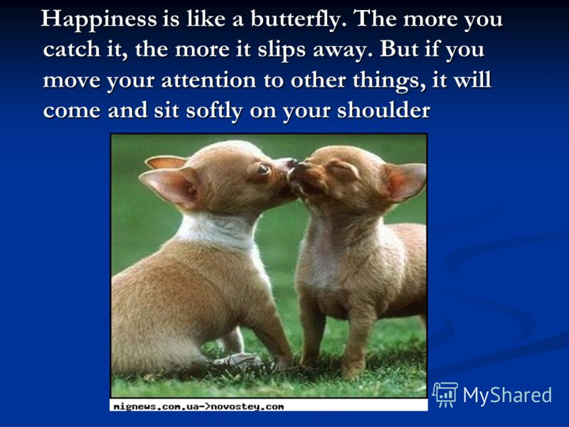 Happiness is like a butterfly. The more you catch it, the more it slips away. But if you move your attention to other things, it will come and sit softly on your shoulder Happiness is like a butterfly. The more you catch it, the more it slips away. B
