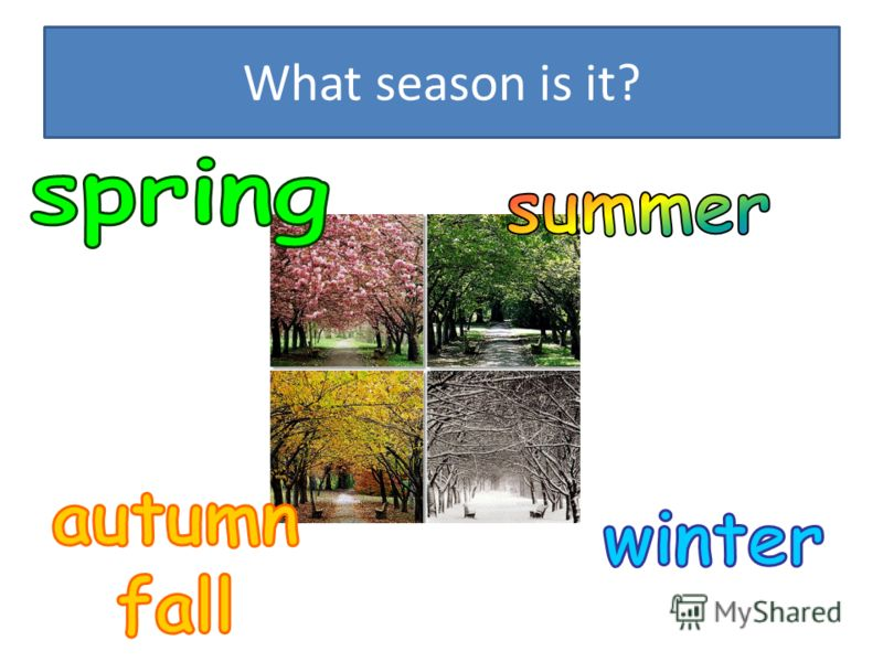 What season is it?