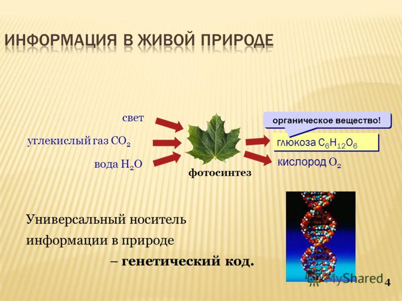 4 Универсальный носитель информации в природе – генетический код. фотосинтез глюкоза C 6 H 12 O 6 кислород O 2 вода H 2 O углекислый газ CO 2 свет органическое вещество!