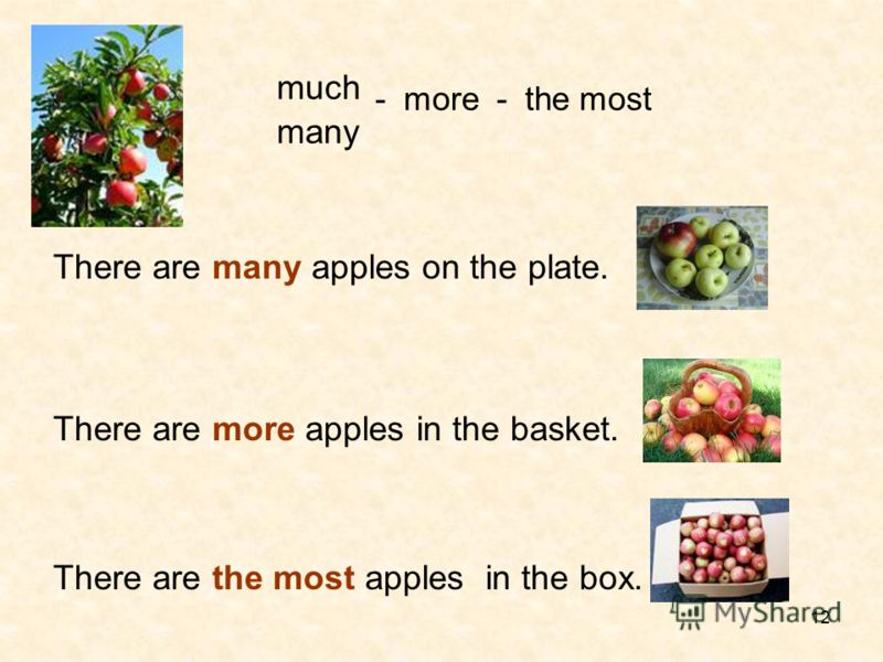 12 much - more - the most many There are many apples on the plate. There are more apples in the basket. There are the most apples in the box.