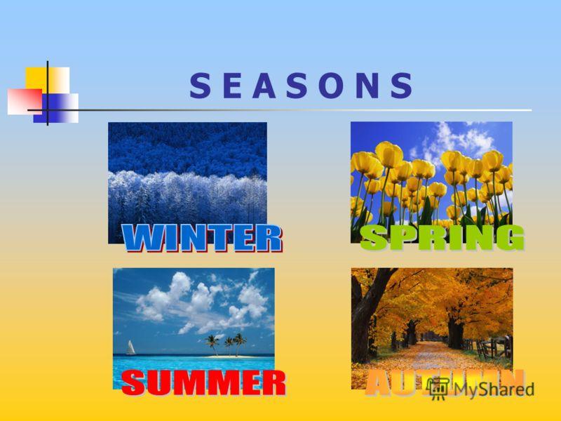 Презентация к урокам английского языка по теме «Speaking about Seasons and Weather» Учебник М.З. Биболетова, 4класс