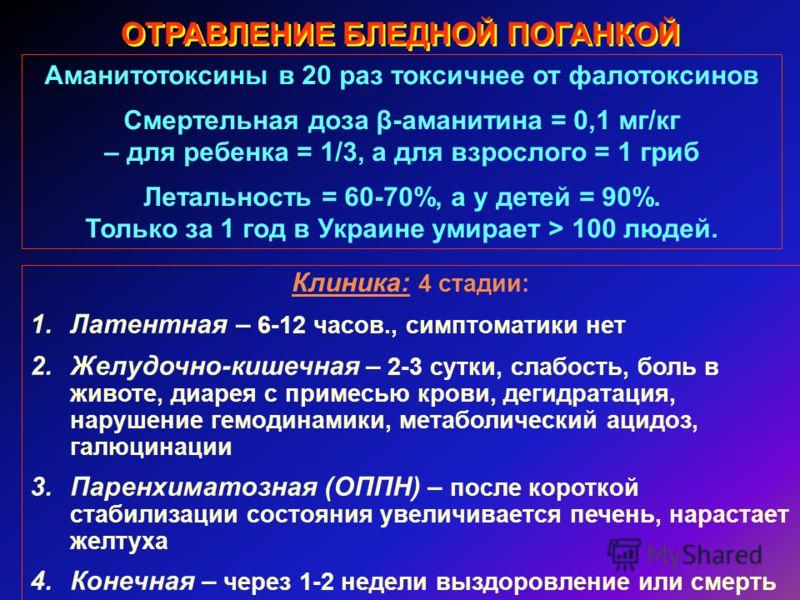 ОТРАВЛЕНИЕ БЛЕДНОЙ ПОГАНКОЙ Аманитотоксины в 20 раз токсичнее от фалотоксинов Смертельная доза β-аманитина = 0,1 мг/кг – для ребенка = 1/3, а для взрослого = 1 гриб Летальность = 60-70%, а у детей = 90%. Только за 1 год в Украине умирает > 100 людей.