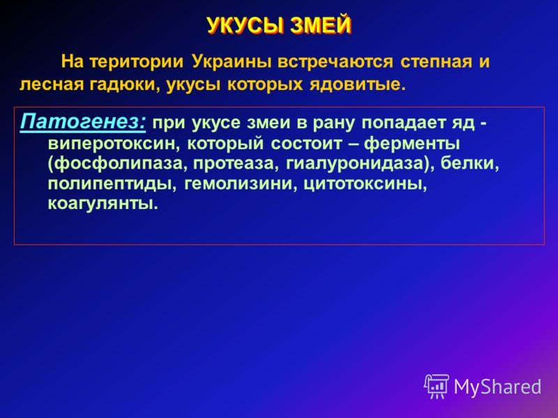 УКУСЫ ЗМЕЙ На територии Украины встречаются степная и лесная гадюки, укусы которых ядовитые. Патогенез: при укусе змеи в рану попадает яд - виперотоксин, который состоит – ферменты (фосфолипаза, протеаза, гиалуронидаза), белки, полипептиды, гемолизин