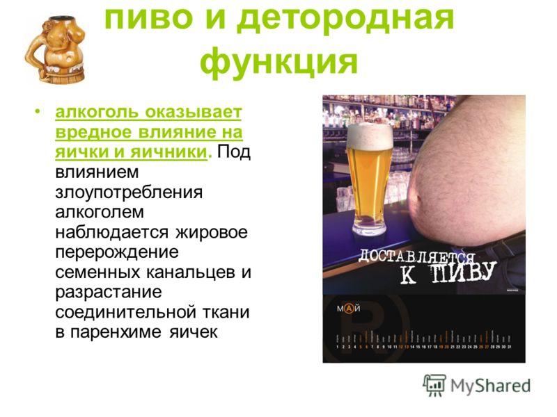 пиво и детородная функция алкоголь оказывает вредное влияние на яички и яичники. Под влиянием злоупотребления алкоголем наблюдается жировое перерождение семенных канальцев и разрастание соединительной ткани в паренхиме яичек