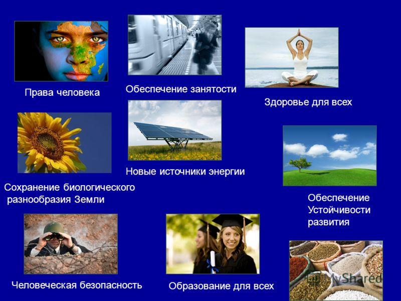 Права человека Новые источники энергии Здоровье для всех Сохранение биологического разнообразия Земли Обеспечение Устойчивости развития Обеспечение занятости Образование для всех Человеческая безопасность