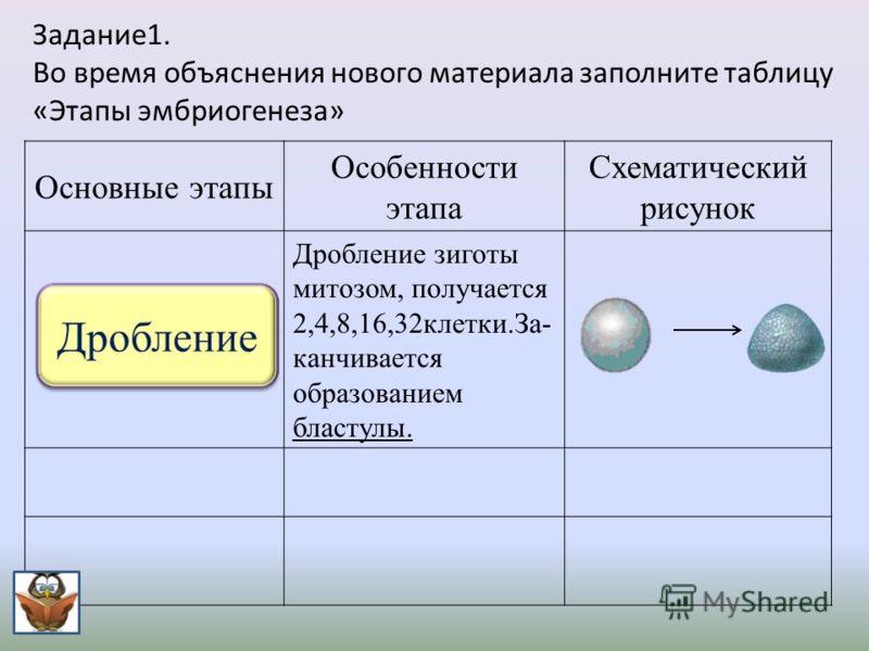 Задание1. Во время объяснения нового материала заполните таблицу «Этапы эмбриогенеза» Основные этапы Особенности этапа Схематический рисунок Дробление зиготы митозом, получается 2,4,8,16,32 клетки. За - канчивается образованием бластулы.