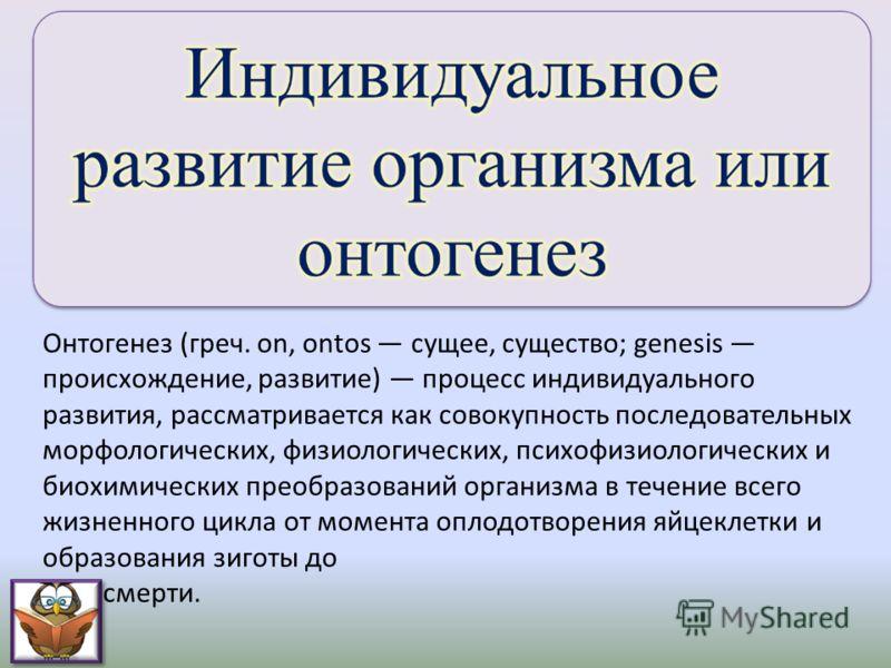Онтогенез (греч. on, ontos сущее, существо; genesis происхождение, развитие) процесс индивидуального развития, рассматривается как совокупность последовательных морфологических, физиологических, психофизиологических и биохимических преобразований орг