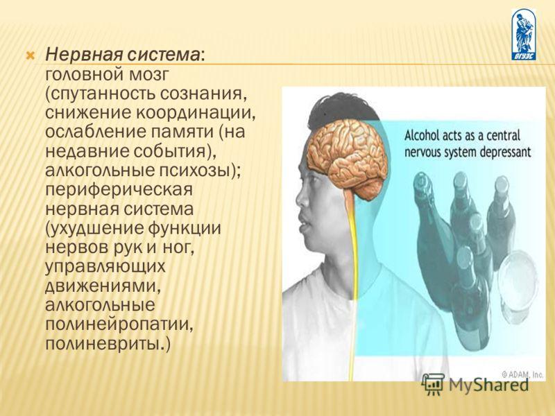 Нервная система: головной мозг (спутанность сознания, снижение координации, ослабление памяти (на недавние события), алкогольные психозы); периферическая нервная система (ухудшение функции нервов рук и ног, управляющих движениями, алкогольные полиней