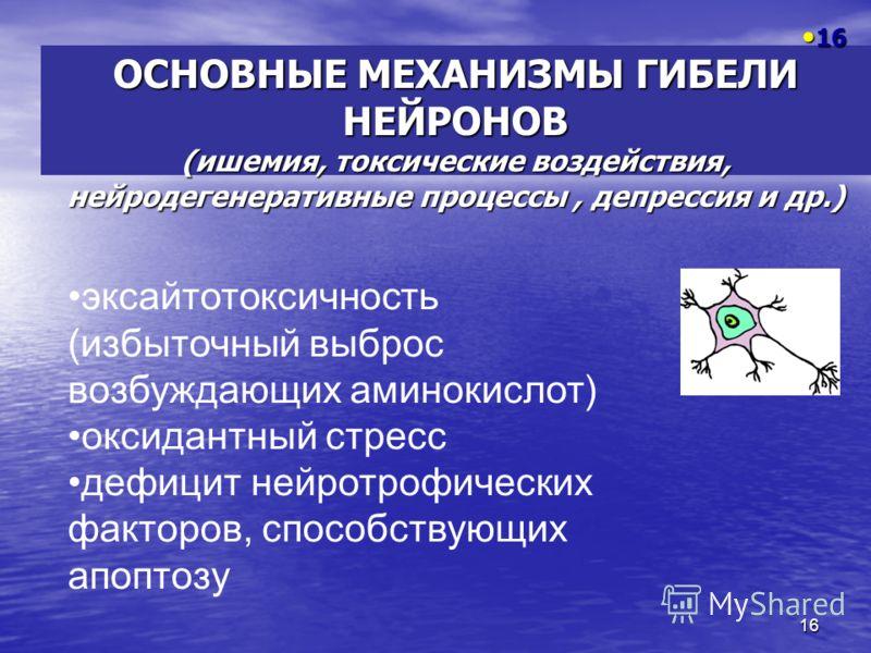 16 ОСНОВНЫЕ МЕХАНИЗМЫ ГИБЕЛИ НЕЙРОНОВ (ишемия, токсические воздействия, нейродегенеративные процессы, депрессия и др.) 16 16 эксайтотоксичность (избыточный выброс возбуждающих аминокислот) оксидантный стресс дефицит нейротрофических факторов, способс