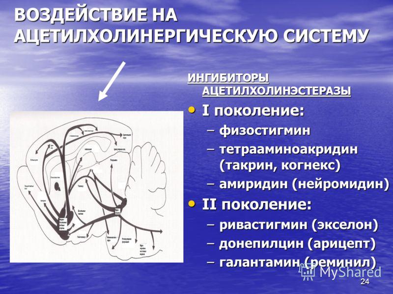 24 ВОЗДЕЙСТВИЕ НА АЦЕТИЛХОЛИНЕРГИЧЕСКУЮ СИСТЕМУ ИНГИБИТОРЫ АЦЕТИЛХОЛИНЭСТЕРАЗЫ I поколение: I поколение: –физостигмин –тетрааминоакридин (такрин, когнекс) –амиридин (нейромидин) II поколение: II поколение: –ривастигмин (экселон) –донепилцин (арицепт)