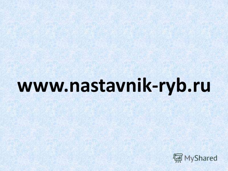 www.nastavnik-ryb.ru