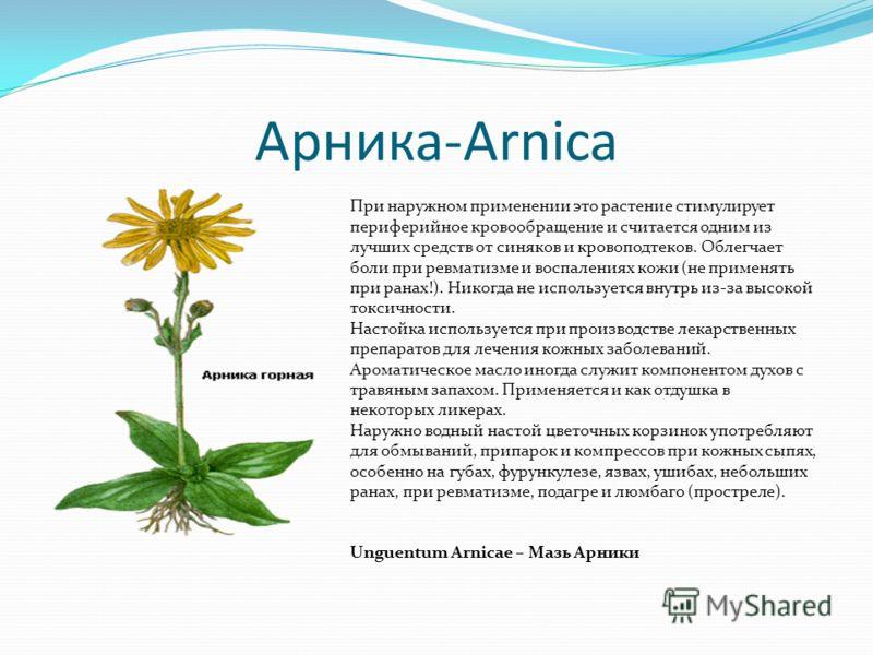 Арника-Аrnica При наружном применении это растение стимулирует периферийное кровообращение и считается одним из лучших средств от синяков и кровоподтеков. Облегчает боли при ревматизме и воспалениях кожи (не применять при ранах!). Никогда не использу