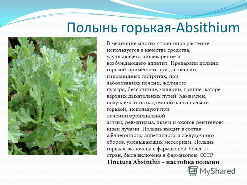 Полынь горькая-Absithium В медицине многих стран мира растение используется в качестве средства, улучшающего пищеварение и возбуждающего аппетит. Препараты полыни горькой применяют при диспепсии, гипоацидных гастритах, при заболеваниях печени, жёлчно