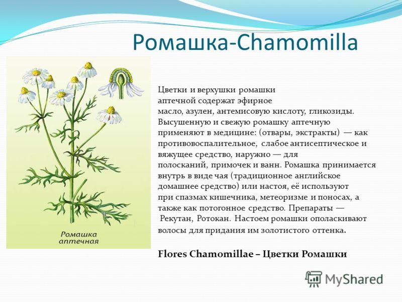 Ромашка-Сhamomilla Цветки и верхушки ромашки аптечной содержат эфирное масло, азулен, антемисовую кислоту, гликозиды. Высушенную и свежую ромашку аптечную применяют в медицине: (отвары, экстракты) как противовоспалительное, слабое антисептическое и в