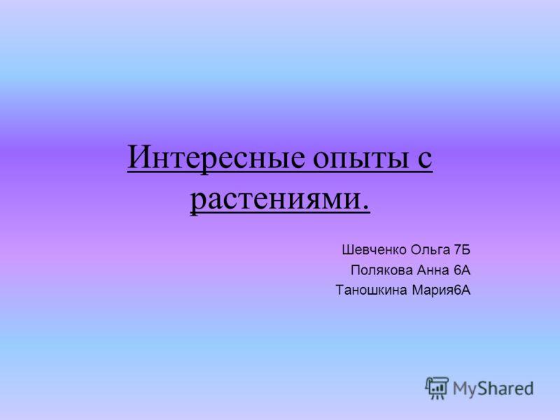 Интересные опыты с растениями. Шевченко Ольга 7Б Полякова Анна 6А Таношкина Мария6А