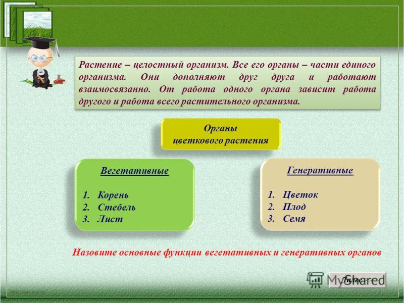 Презентации 6 класс растения единый организм