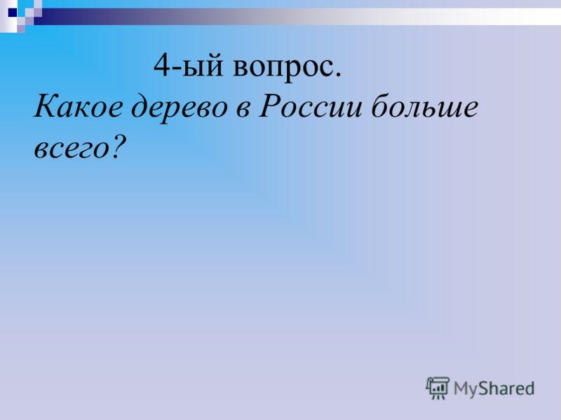 4-ый вопрос. Какое дерево в России больше всего?