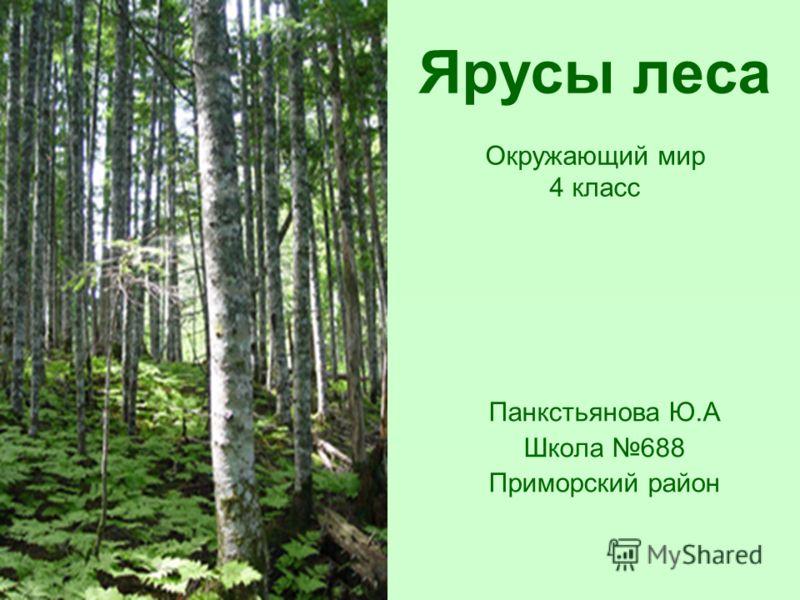 Окр мир за 4 класс тема жизнь леса