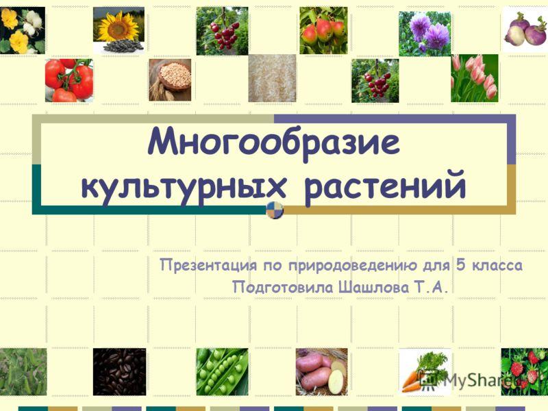 Многообразие культурных растений Презентация по природоведению для 5 класса Подготовила Шашлова Т.А.