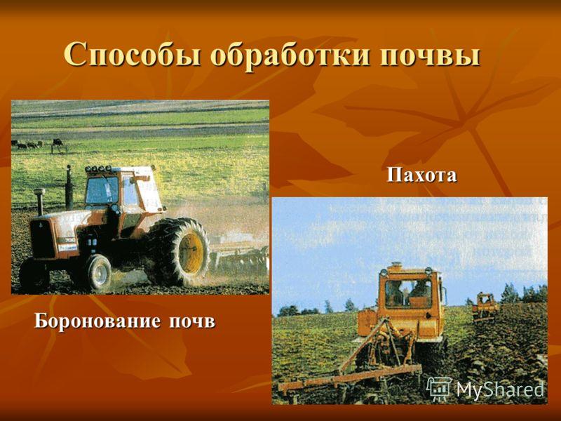 Способы обработки почвы Боронование почв Пахота
