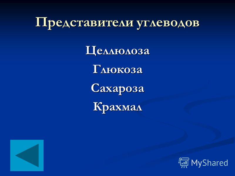 Представители углеводов ЦеллюлозаГлюкозаСахарозаКрахмал