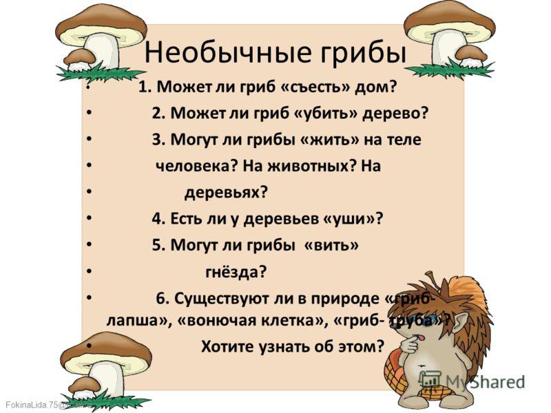 FokinaLida.75@mail.ru Необычные грибы 1. Может ли гриб «съесть» дом? 2. Может ли гриб «убить» дерево? 3. Могут ли грибы «жить» на теле человека? На животных? На деревьях? 4. Есть ли у деревьев «уши»? 5. Могут ли грибы «вить» гнёзда? 6. Существуют ли
