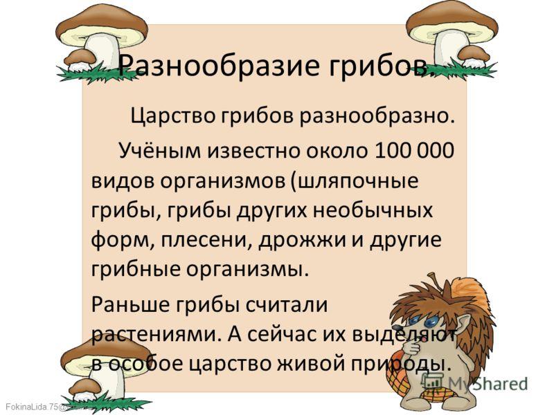 FokinaLida.75@mail.ru Разнообразие грибов. Царство грибов разнообразно. Учёным известно около 100 000 видов организмов (шляпочные грибы, грибы других необычных форм, плесени, дрожжи и другие грибные организмы. Раньше грибы считали растениями. А сейча